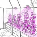 Прожекторы на фитодиодах для растений