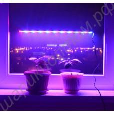 """Ультратонкий фитосветильник для растений на подоконнике """"Альтаир"""", гарантийное обслуживание - 1 год"""