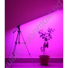 """LED светильник для растений на штативе """"Везен"""", гарантийное обслуживание - 1 год"""