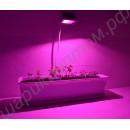 Фитопрожектор с мощным COB фитодиодом полного спектра «Адара», гарантийное обслуживание - 1 год