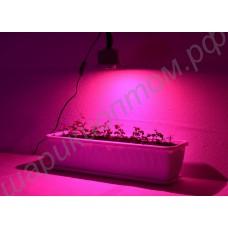 """Мощный 10Вт фитодиод на радиаторе LED grow light """"Мерак"""", гарантийное обслуживание - 1 год"""