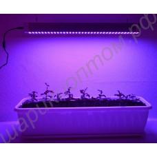 """Искусственная подсветка для растений на базе светодиодов SMD 5630 """"Мимоза"""", гарантийное обслуживание - 1 год"""