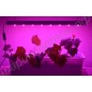 Светильник фитосветодиодный для растений на подоконнике «Спика», гарантийное обслуживание - 1 год