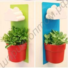 Настенный горшок для цветов с облачком для полива