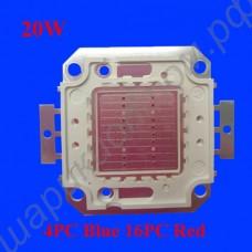 Светодиодный чип с красными и синими составляющими мощностью 20Вт для подсветки растений