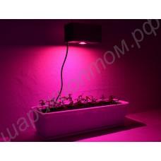 Лампа для освещения оранжереи с фито светодиодом 50 Вт «Капелла», гарантийное обслуживание - 1 год