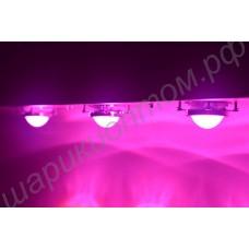 Тепличный фито светильник с мощными линзованными светодиодами «Тайгета», гарантийное обслуживание - 1 год