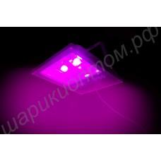 """Фитопрожектор """"Субра"""" светодиодный на полноспектровых чипах суммарной мощностью 100Вт"""