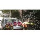 Генераторы мыльных пузырей на свадебный автомобиль
