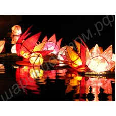 Водные фонарики различных форм и расцветок