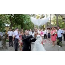 Свадебные надувные голуби (био голуби)